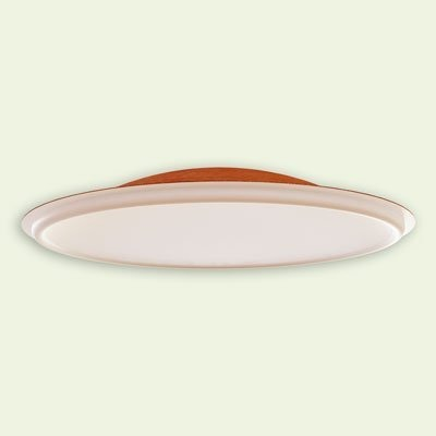 Fiberglass Ceiling Dome CD60x13 B45