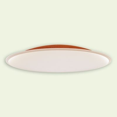 Fiberglass Ceiling Dome CD89x16 B45